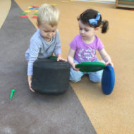 Kent-Nursery-Dubai-1
