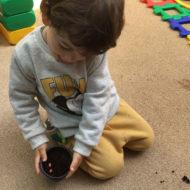 top-inclusive-nurseries